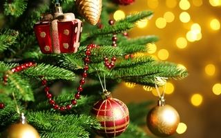 Куда съездить на новогодние праздники в России и мире?