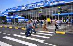 Online табло аэропорта Емельяново Красноярск вылет рейсов