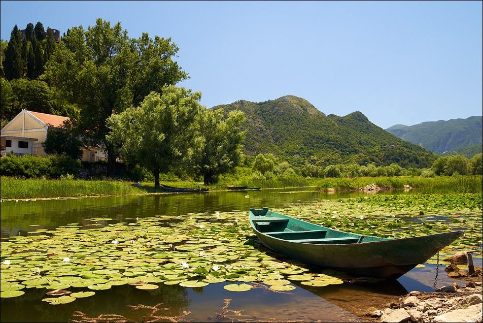 Что посмотреть в Черногории самостоятельно на машине Скадарское озеро
